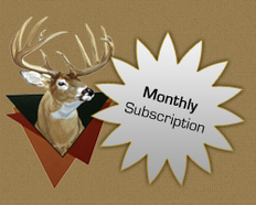 1-Month Subscription
